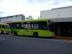 Local Bus services, Rotorua, NZ