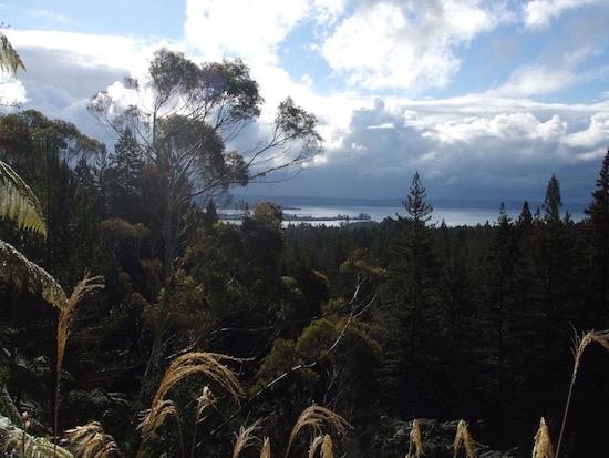 View from Tokorangi Pa Road over Lake Rotorua, Rotorua, NZ.