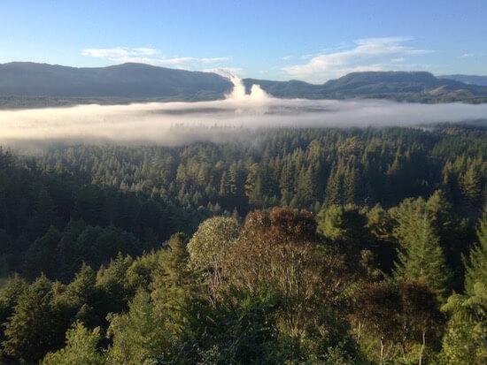 View from the Trigg over Waipa and Whakarewarewa Forest, Rotorua