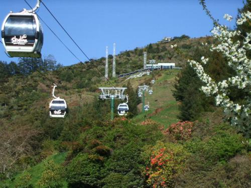 Rotorua Luge - View from carpark to top of Skyline Skyrides.