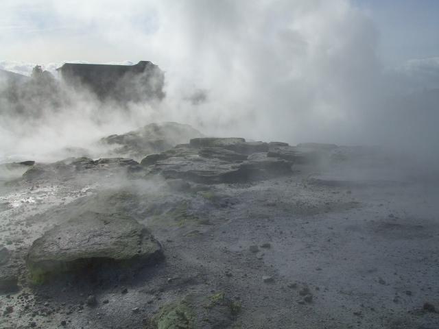 Rotorua thermal sights are everywhere
