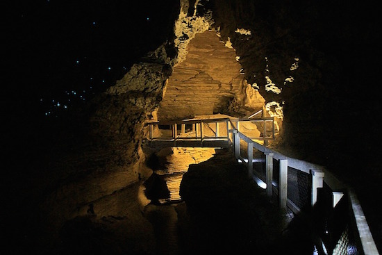 © CaveWorld Waitomo. Footwhistle glow worm walk