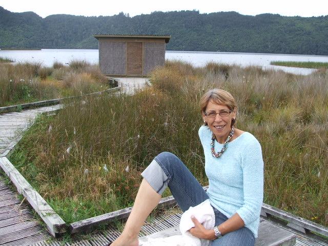 A birdwatching hide at Okareka