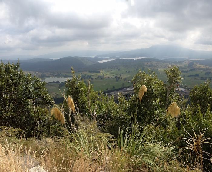View from Rainbow Mountain to Mount Tarawera.