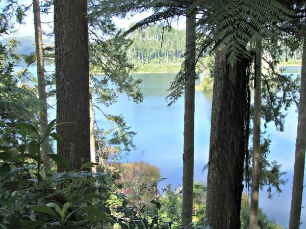 Blue and Green Lakes,Rotorua - Green Lake at the SH5 end