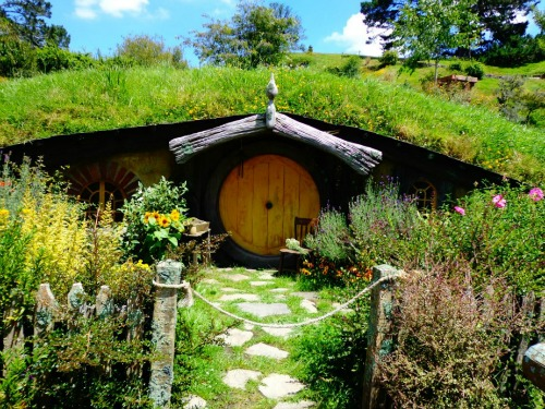 Hobbiton Tour - Hobbit hole on the movie set.