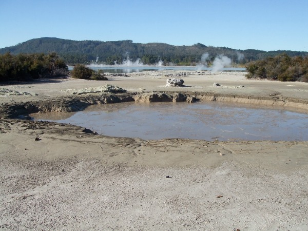 Cameron's Laughing Gas pool, Rotorua, NZ