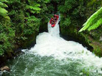 Kaituna white water rafting for an adrenalin rush.