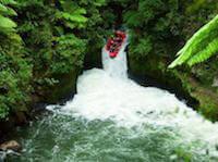 Kaituna white water rafting for an adrenalin rush.