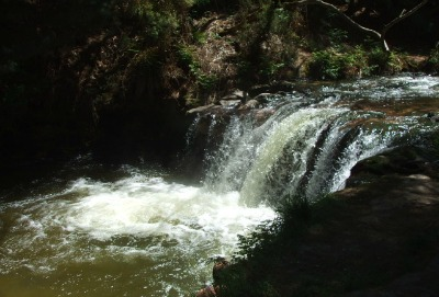 Kerosene Creek, Rotorua, NZ.