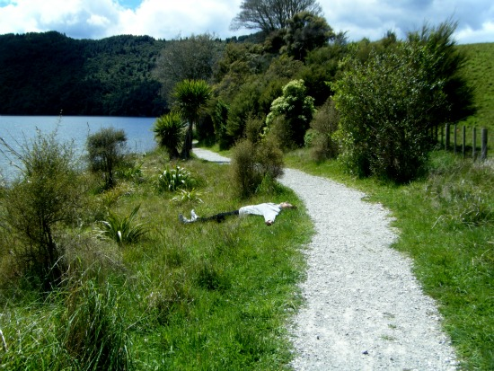 Part of the Lake Okareka walkway