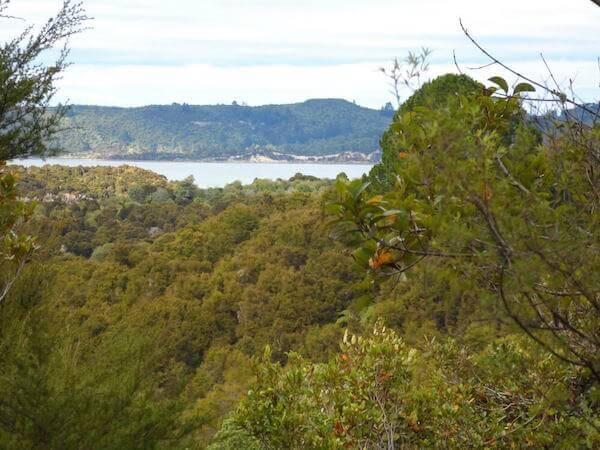 View from Tarawera Trail to Lake Rotomahana