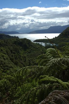 Lake Tarawera with Mt Tarawera in the background.