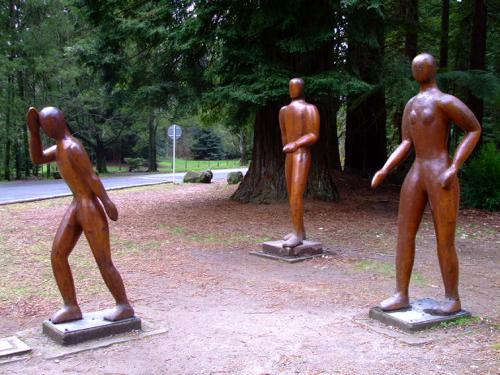 Rotorua Redwoods - Walk in the Redwoods Sculptures at the Info Center