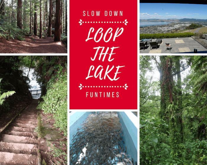 Rotorua Loop the Lake Self-drive Tour Guide for Couples