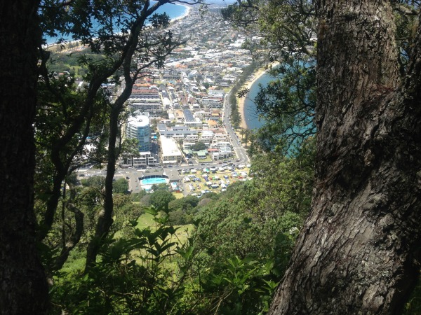 Looking down on Pilot Bay (right) from Mount Maunganui (Mauao).