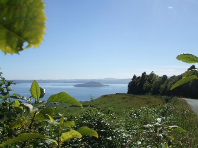 The Mount Ngongotaha walks view to Mokoia Island - Rotorua, NZ