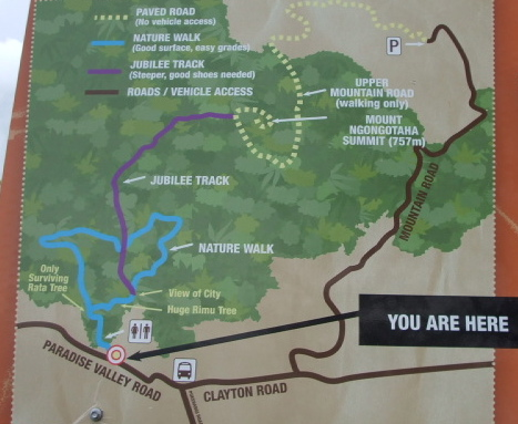 Mount Ngongotaha walking tracks map.