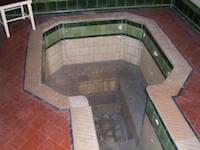Rotorua Museum Honeymoon Pool, Rotorua, NZ