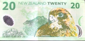 NZ $20 note featuring the native falcon