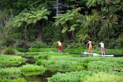 Rotorua Paddle Tours at Hamurana