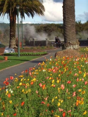 View to Rachel Pool at Government Gardens, Rotorua, NZ
