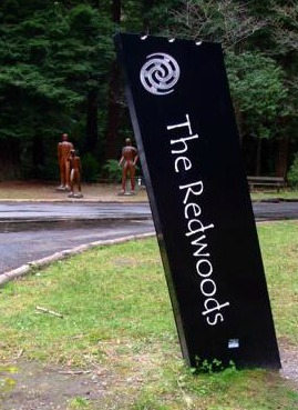 The Rotorua Redwoods sign, NZ