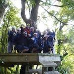 Rotorua Canopy Tours