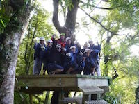 Canopy Tours Eco-Adventure with ziplining and swing bridges.