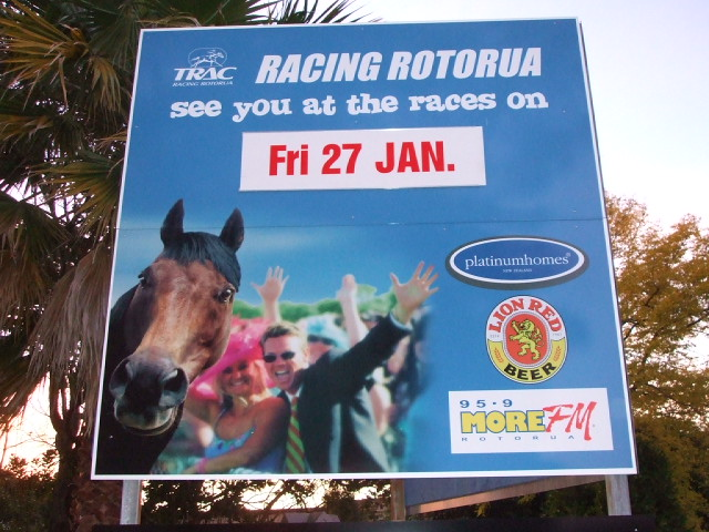 I love the horse on this sign, he looks so nosy - Top Ten Reasons To Visit Rotorua