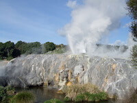 Four Feathers Geyser at Te Puia, Rotorua, NZ
