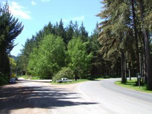 Rotorua Mountain Biking Secondary Carpark at Hill Rd