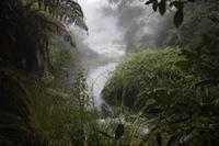 Rotorua Thermal at Waimangu Volcanic Valley