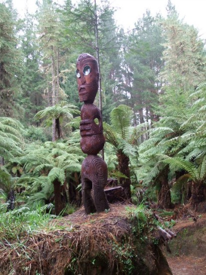 A Ponga Track Carving on the Rotorua Puarenga Walk