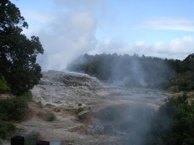 Numerous tours in Rotorua vist Te Puia