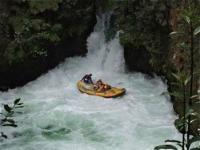Whitewater Rafting - Rotorua, N
