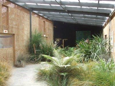 Wingspan, Rotorua, NZ - aviary area