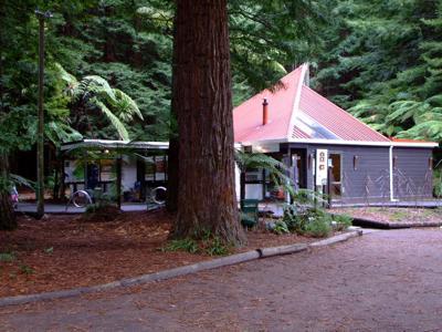 Rotorua Redwoods gift shop & info center