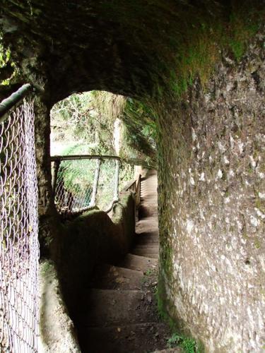 Hinemoa's Steps at Okere Falls, Rotorua, New Zealand