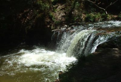 Kerosene Creek, NZ - located at Rotorua