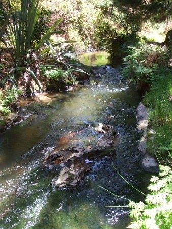 Kerosene Creek, Rotorua, NZ