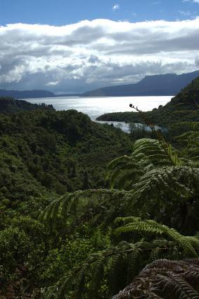 Lake Tarawera with Mt Tarawera in the background.