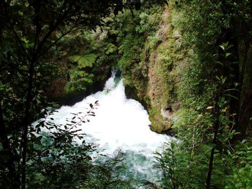 Okere Falls River, Rotorua, New Zealand