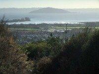 One day in Rotorua Tours  Mokoia Island