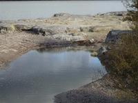 Rotorua Thermal - Sulphur Flat