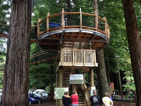 Rotorua Redwoods Treewalk - a fabulous family-friendly activity.